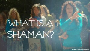 What is a Shaman?